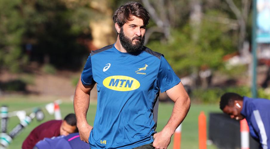 Lood back to face All Blacks but Cheslin still doubtful - SuperSport