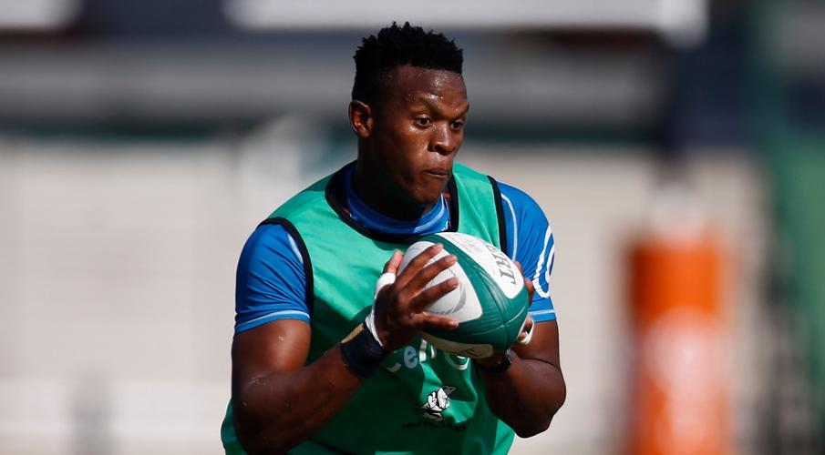 Riches of talent as Springbok showdown group of 92 named - SuperSport